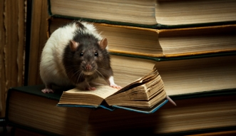 smart-rat
